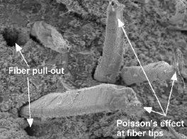ساختار میکروسکوپی بتن الیافی