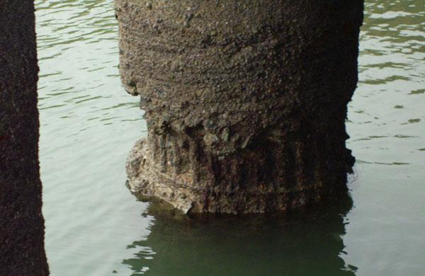نمونهای از خوردگی در محیط دریایی