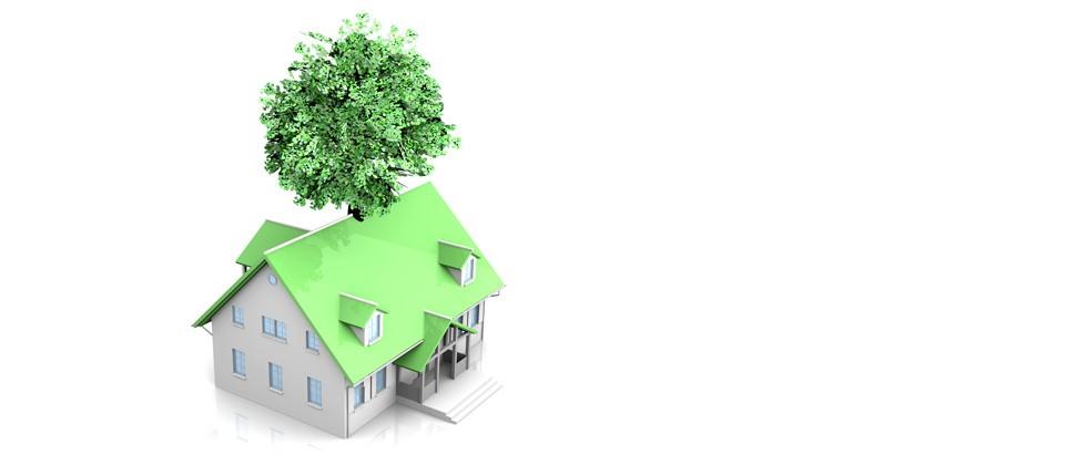 مقاومسازی سبز